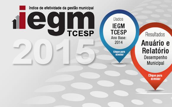 webdoor-iegm2015