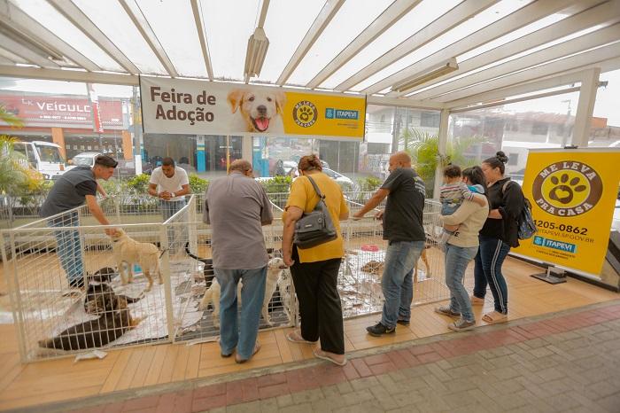 Itapevi realiza 19ª edição da Feira de Adoção de Cães e Gatos